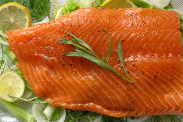 ماهی سالمون و کلسترول خوب خون