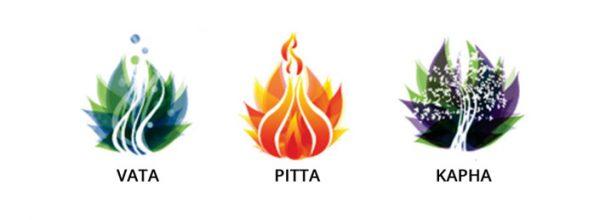 پیتا دوشا
