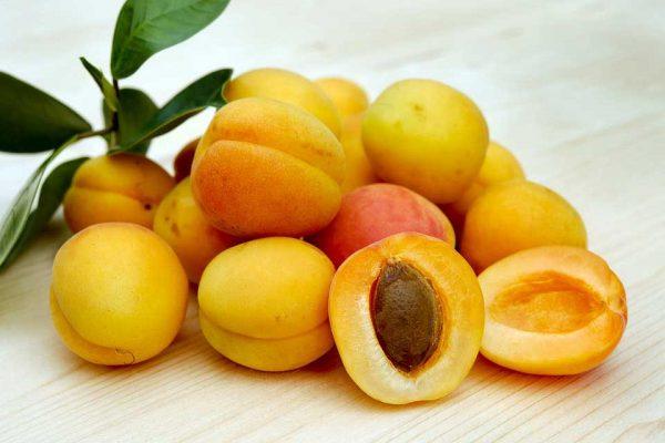 11 فایده بهداشتی و شگفت انگیز زردآلو