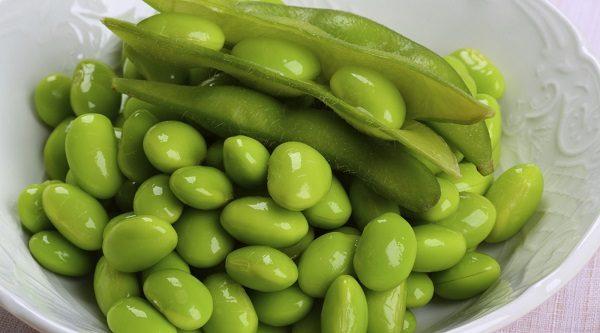 پروتئین در سویا