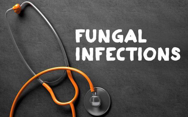 عفونت های قارچی
