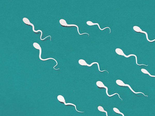 رژیم غذایی و راه های طبیعی تقویت اسپرم