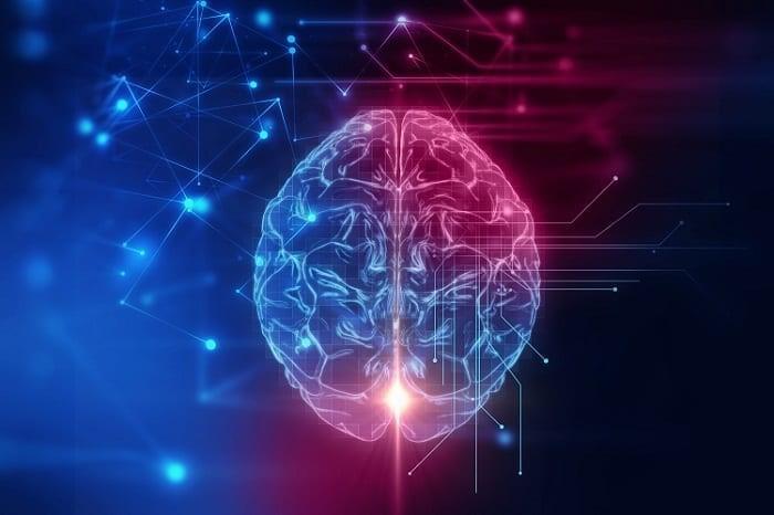 زیر شاخه های رشته روانشناسی چیست ؟